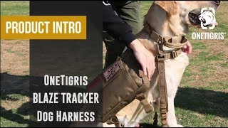 Product Intro: OneTigris BLAZE TRACKER Dog Harness