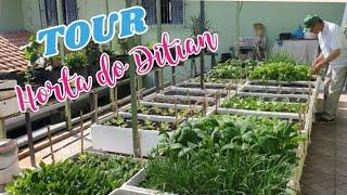 ?VEJA: DICAS INÉDITAS do Ditian nesse Tour MARAVILHOSO pela horta na laje