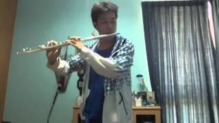 Mononoke Hime - もののけ姫 - Princess Mononoke - Flute Cover
