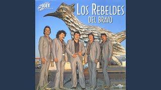 Los Robabancos