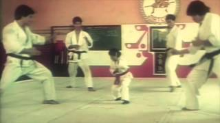Comunidade Nin-Jitsu - CNJ