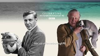 Interview with David Attenborough - Attenborough at 90 - BBC