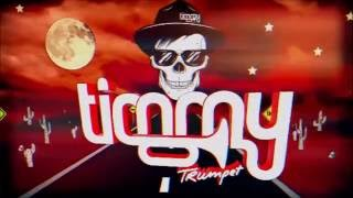 Timmy Trumpet - Tomorrowland Mix [HD]