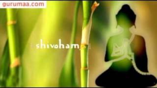 shivoham by Anandmurti Gurumaa