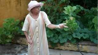 Tia nina cantando e dançando muito engraçado