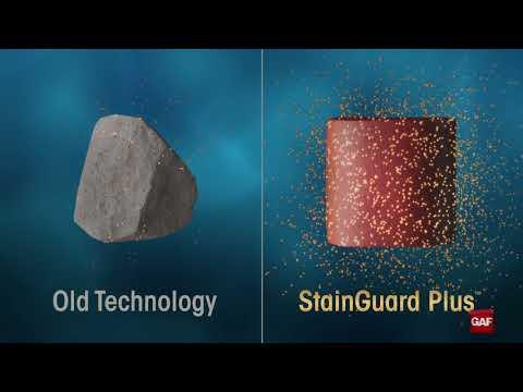 StainGuard Plus