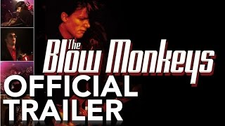 The Blow Monkeys - Live From London | Official Trailer