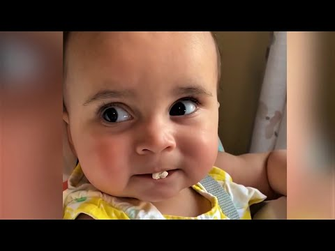 Baby Cuteness Videos You Cann't Watch Without AWW - Funniest Home Videos BabiezTV