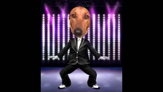 Bo Gangnam Style