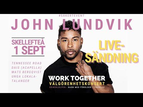 John Lundvik m.fl. - Work Together 2021