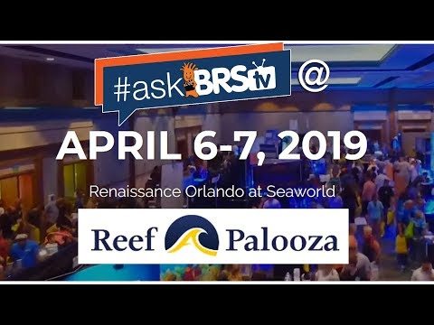 Going to Reef-A-Palooza Orlando? We'll be there! | #AskBRStv Live