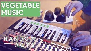 J. Viewz - Vegetable Orchestra   Massive Attack's Teardrop on Vegetables   Random Acts