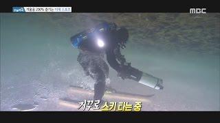 [Live Tonight] 생방송 오늘저녁 527회 - Let's enjoy the winter icediving 20170123
