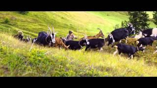 HEIDI - Teaser Trailer HD (2015)