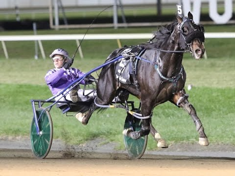 2016 Breeders Crown 3-Year-Old Colt Pace-Racing Hill