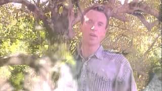 Emanuel - Chorei Em Silêncio (Vídeo Oficial) (1996)