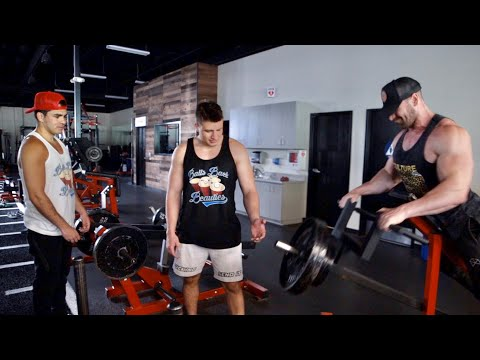 Destroying Back W Nelk Boys And Steve Will Do It Stephen deleonardis (born august 26, 1998), better known as stevewilldoit, is an american youtuber and entertainer known for his extreme challenge videos. destroying back w nelk boys and steve