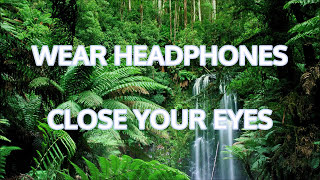 See with your Ears. Binaural sound for Virtual Jungle Book experience