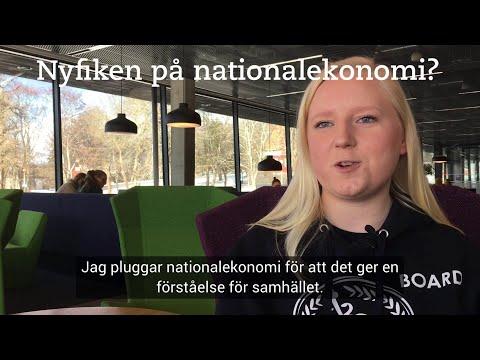 Nyfiken på nationalekonomi?