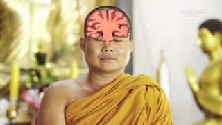 How Does Meditation Change the Brain    Instant Egghead #54