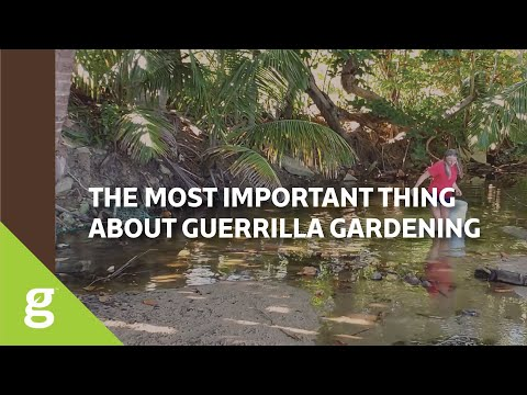 The Most Important Thing About Guerilla Gardening