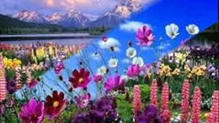 Tavaszi szél vizet áraszt