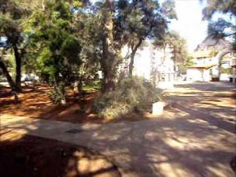 BLIDA: Le Jardin de Sidi Yakoub