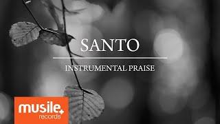 Santo - Instrumental Praise