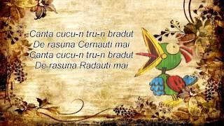 ADDA - Cântă cucu (Lyrics/Versuri)