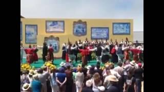 BAILINHO DA MADEIRA