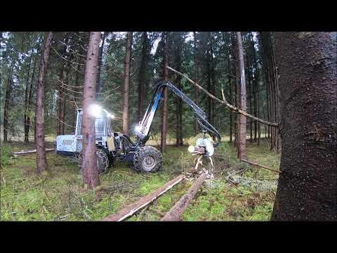 SPRUCE HARVESTING IN LATVIA WITH A VIMEK 404 SE