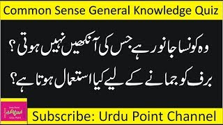 Interesting General Knowledge Quiz | Common Sense Questions | Brain Teasers in Urdupoint | Paheli