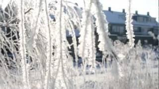 Nikon D3100 - Snow (1080p)