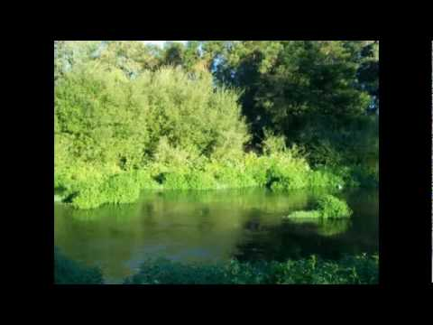 riverfront lifestyle farm for sale in Wellington, South Africa by Census Real Estate