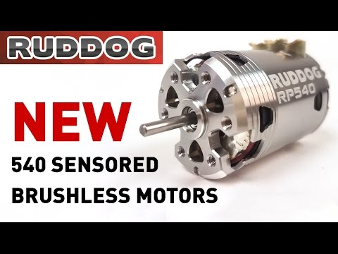 Ruddog RP540 Sensored Brushless Motors