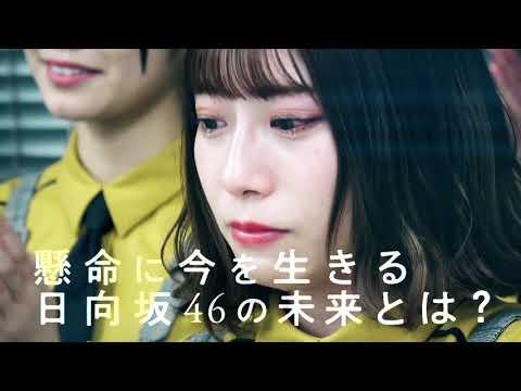 日向坂46ドキュメンタリー映画特報
