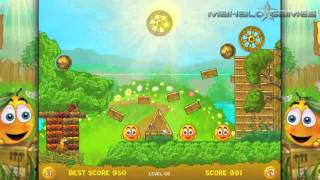 Cover Orange Level 66