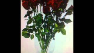 ¡¡ 25 Rosas !!