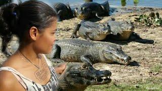 Eu Ester Tigresa comprovei que no pantanal jacaré faz até pose pra tirar foto! Quase peguei no rabo