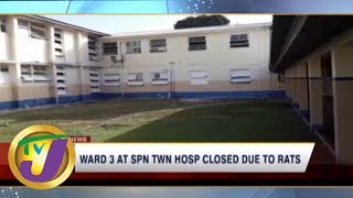 TVJ News Today: Rat Infested Hospital Ward Closed - June 13 2019