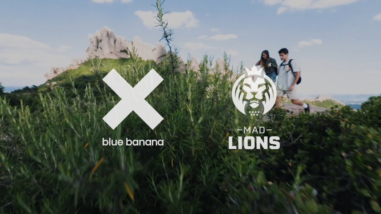 Splyce - Introducing the MAD Lions x blue banana Collection