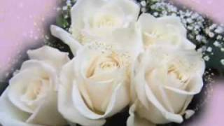 Sofi Marinova - Beli ruzi