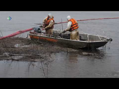 Продолжается сбор нефтепродуктов на водной поверхности реки Колва и очистка берегов