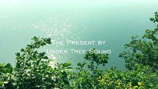 Calming music: Peaceful Forest River. Nature sound. Zen music. Relaxing Sleep.