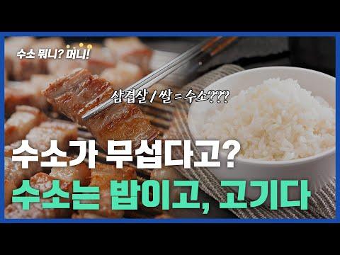 [수소 뭐니?머니!]수소는 밥이고, 고기다.