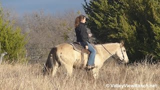 Sheza Expensive Leo - trail riding #1 - Valley View Ranch