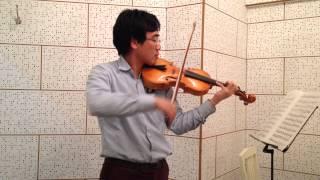 Suzuki Violin School Book 4 no. 2 Concerto No. 5, 1st mvt - Allegro moderato