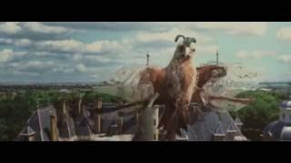 Leander Kills - Bird (Official Music Video)