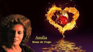 Amália _  Rosa de Fogo