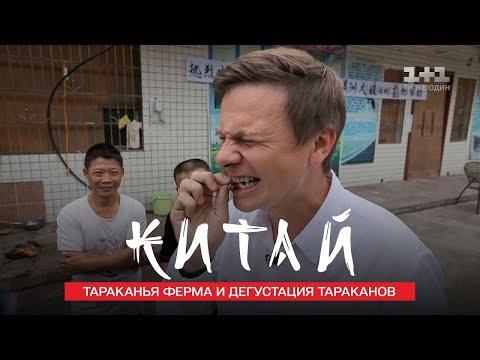 Сычуаньский танцующий повар, Дима Комаров и тараканья ферма. Китай. Мир наизнанку 11 сезон 10 серия